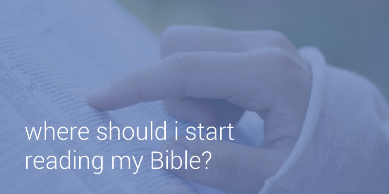 how to start reading the bible pdf